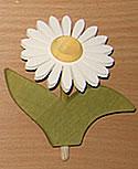1 Nedholm Gerbera, weiß/gelb, hellgrüne Blätter
