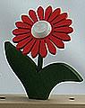1 Nedholm Gerbera, rot/weiß, dunkelgrüne Blätter