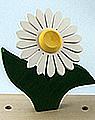 1 Nedholm Gerbera, weiß/gelb, dunkelgrüne Blätter