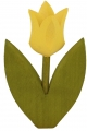 1 Nedholm tulip yellow, 2-leaved light green