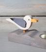 Talvel big sea gull
