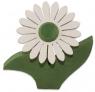 1 Nedholm Gerbera, weiß/hellgrün, hellgrüne Blätter, EINZELSTÜCK