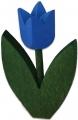 1 schwedische Tulpe blau, dunkelgrüne Blätter, EINZELSTÜCK