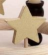 1 Holzstecker großer Stern, gold